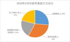 2019年2月中国股权激励研究报告