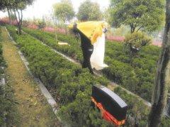 http://www.qinminwang.com/uploads/allimg/160405/15463OK8_lit.jpg